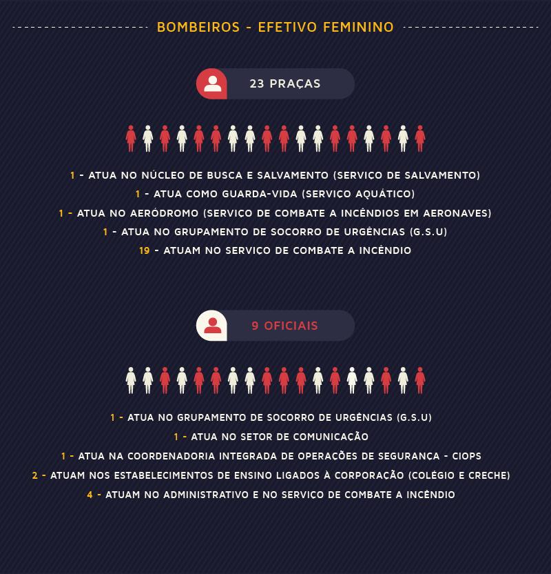 Efetivo Feminino-01