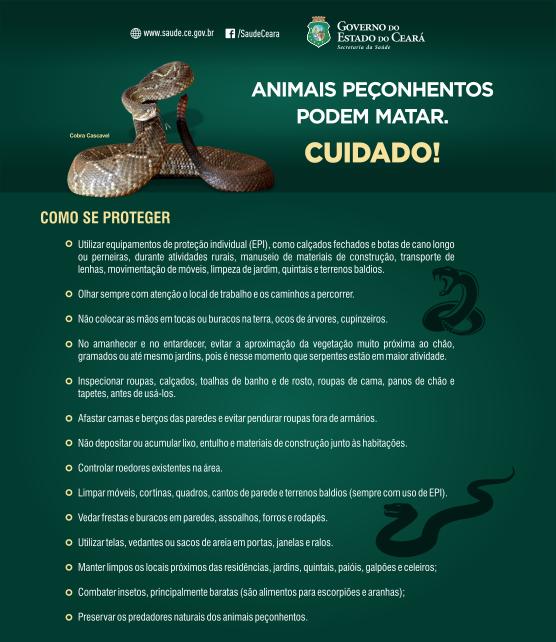 folder digital animais peconhentos julho2016 site 001