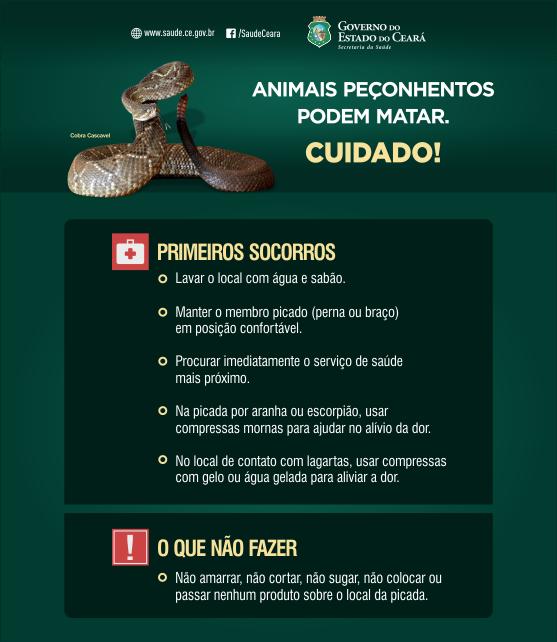 folder digital animais peconhentos julho2016 site 002