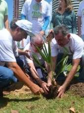 Festa Anual das Árvores: 3ª Corrida pela Natureza acontece no próximo dia 25