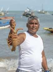 Programa Lagosta Viva prevê aumento da exportação da lagosta inteira, ao mesmo tempo que preserva espécie