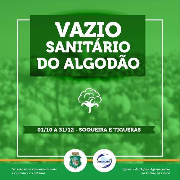 banner Vazio Sanitário do Algodão