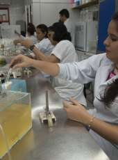 Cientista Chefe leva a ciência para gestão pública