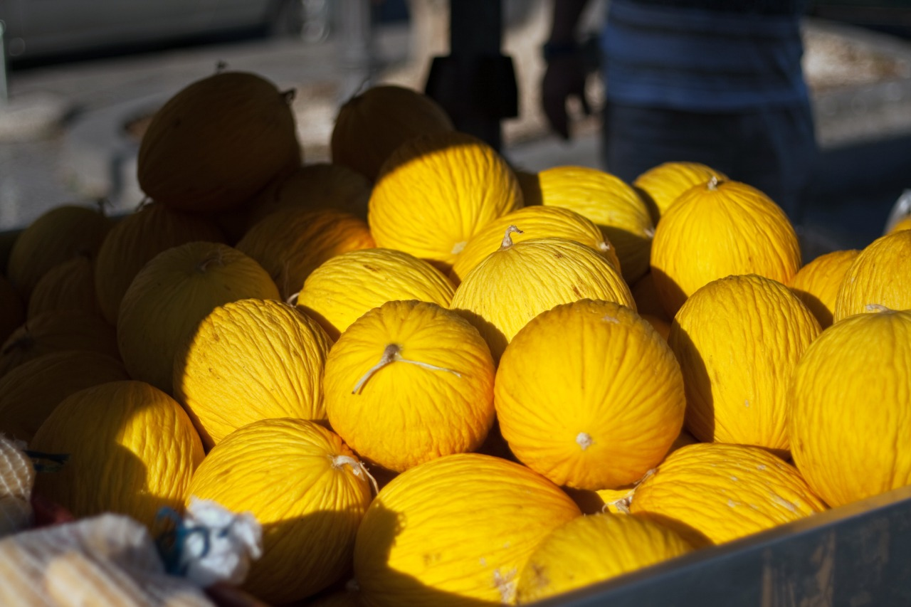 Mercado chinês está oficialmente aberto para exportação de melão produzido no Ceará
